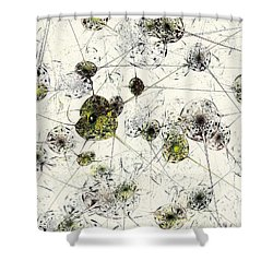 Neural Network Shower Curtain
