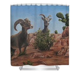 Shower Curtain featuring the painting Nevada Big Horns by Roseann Gilmore