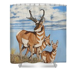 Nevada Speedsters Shower Curtain