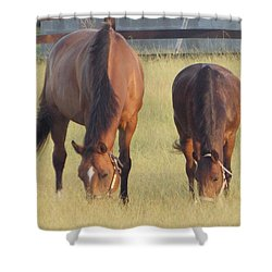 Shower Curtain featuring the photograph Never Far Away by John Glass