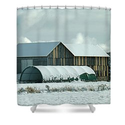 Shower Curtain featuring the photograph New And Old Barn Planks by Brenda Brown