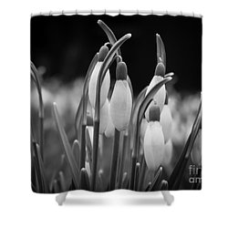 New Beginnings And Hope Shower Curtain by Inez Wijker Photography