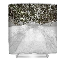 New England Snow-covered Forest - New Hampshire Usa Shower Curtain by Erin Paul Donovan
