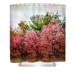 New England Spring Shower Curtain