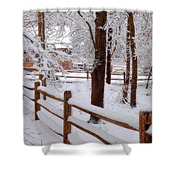 New England Winter Shower Curtain by Dianne Cowen