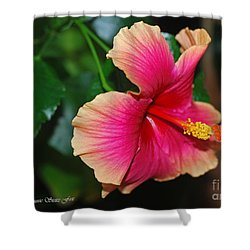 New Every Morning - Hibiscus Shower Curtain