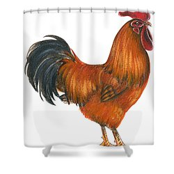 New Hampshire Rooster  Shower Curtain by Anonymous