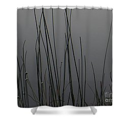 New Joys Shower Curtain