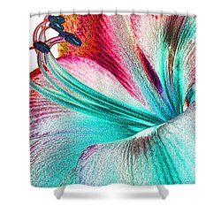 New Kid In Town Shower Curtain by Margie Chapman