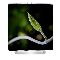New Life Shower Curtain by Bob Orsillo