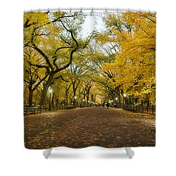 New York City - Autumn - Central Park - Literary Walk Shower Curtain by Vivienne Gucwa