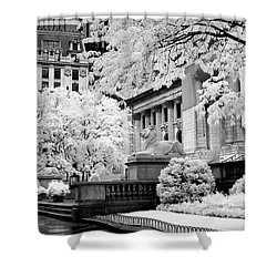 New York Public Library Ir Shower Curtain