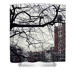 New York Winter Day 2 Shower Curtain by Sarah Loft