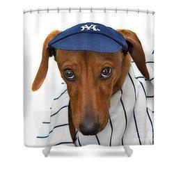 New York Yankee Hotdog Shower Curtain by Susan Candelario