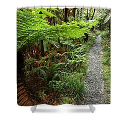 New Zealand Forest Shower Curtain by Les Cunliffe