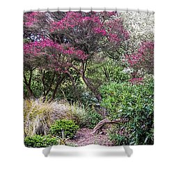 Shower Curtain featuring the photograph New Zealand Tea Tree II by Kate Brown