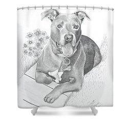 Newman Shower Curtain