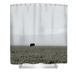 Ngorongoro Crater Shower Curtain by Shaun Higson