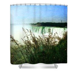 Niagara Falls With Grasses Shower Curtain