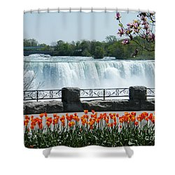 Niagara - Springtime Tulips Shower Curtain by Phil Banks
