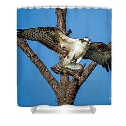 Nice Catch Shower Curtain