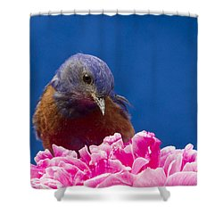 Nice Flower Shower Curtain by Jean Noren