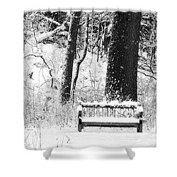 Nichols Arboretum Shower Curtain