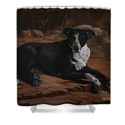 Nicky Shower Curtain by Lisa Phillips Owens