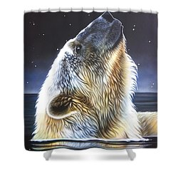 Nigh Star Shower Curtain