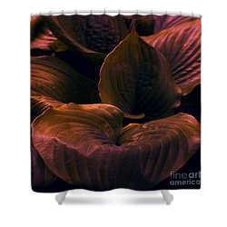 Night Abyss Shower Curtain
