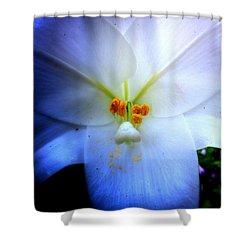 Night And Day Lilly  Shower Curtain