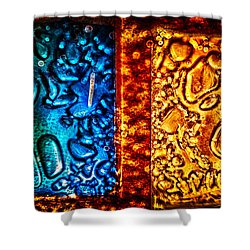 Night And Day Shower Curtain by Omaste Witkowski