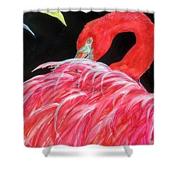 Night Flamingo Shower Curtain by Lil Taylor