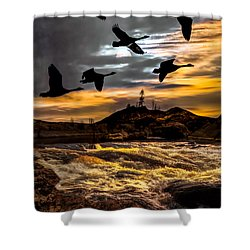 Night Flight Shower Curtain by Bob Orsillo