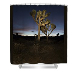 Night Light Painting Joshua Tree National Park Shower Curtain