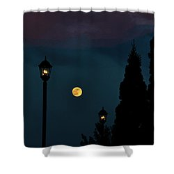 Night Lights Shower Curtain by Lydia Holly