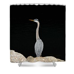 Night Of The Blue Heron 2 Shower Curtain