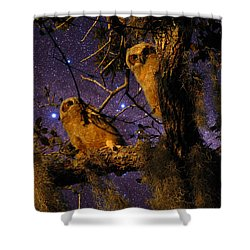 Night Owls Shower Curtain by Phil Penne