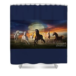 Night Play Shower Curtain