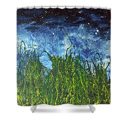 Night Sky 2007 Shower Curtain