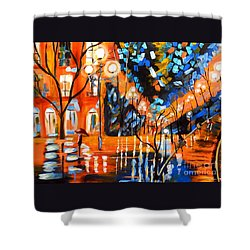 Night Village Rain Shower Curtain