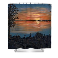 Nightfall At Loxahatchee Shower Curtain