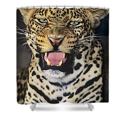 No Solicitors African Leopard Endangered Species Wildlife Rescue Shower Curtain by Dave Welling
