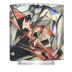 Noah And The Fox Shower Curtain by Franz Marc