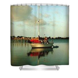 Noah's Jubilee Shower Curtain by Karen Wiles