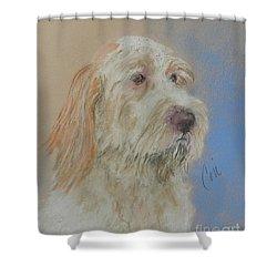 Noble Hunter Shower Curtain by Cori Solomon