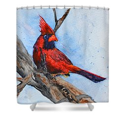 Shower Curtain featuring the painting Noble Overseer by Beverley Harper Tinsley