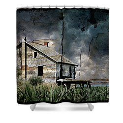 Nobody's Home Shower Curtain by Lois Bryan