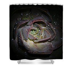 Nocturnal Diamonds Shower Curtain