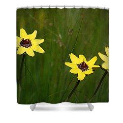 #nokxl Shower Curtain